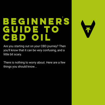 A Beginners Guide to CBD